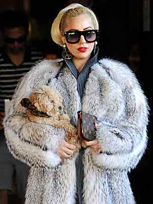 Lady Gaga&#39;s Furry Style Slammed &#8211; Again