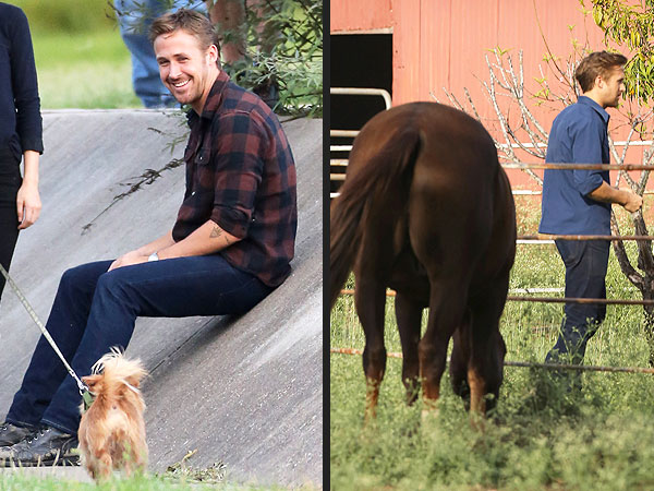 Ryan Gosling on Terrence Malick Set with Dog and Horse