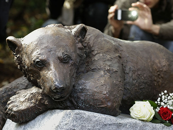 Polar Bear Knut Remembered at Berlin Zoo with Statue