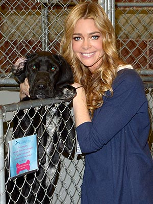 Denise Richards Adopts Dog After Superstorm Sandy