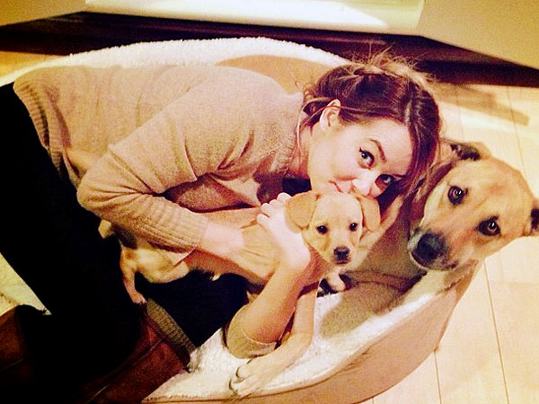 Lauren Conrad Dogshames Her New Puppy