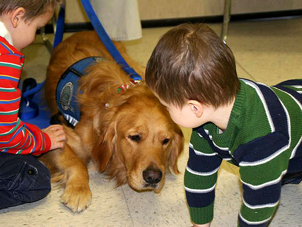 Connecticut Shooting: Comfort Dogs Help Grieving Families in Newtown