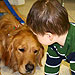 'Comfort Dogs' Help Those Grieving in Newtown