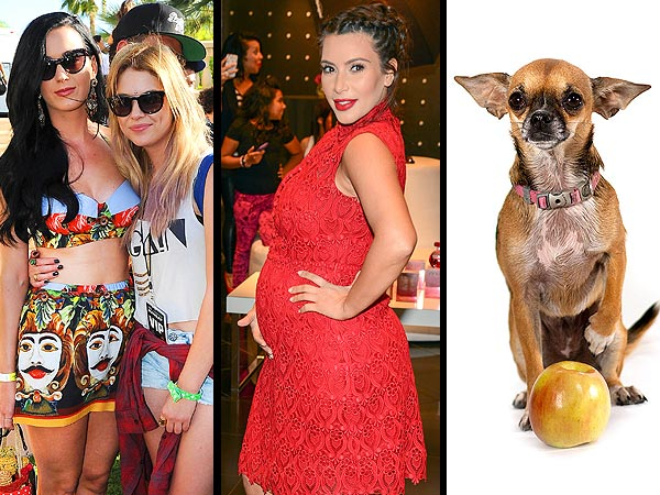 Kim Kardashian Stuns in Red, Katy Perry & More Stars Sweat It Out at Coachella