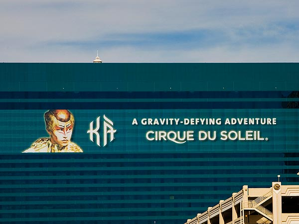 Cirque Du Soleil's Sarah (Sassoon) Guyard Killed in Fall