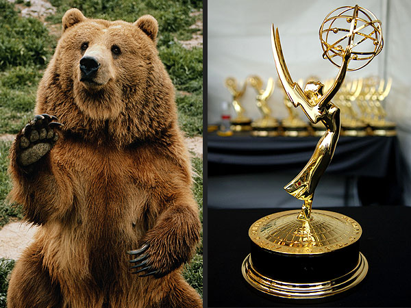 Beats, Bears and the Battle for Emmy: The Most Important Things on the Internet
