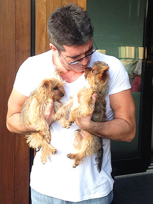 Two More Babies On the Way for Simon Cowell – Furbabies!
