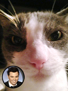 Seth MacFarlane&#39;s Oscars Gig Praised ... By His Cat | Seth MacFarlane