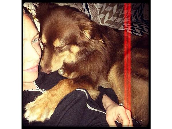 Pets Instagram Videos: Julianne Hough, Zooey Deschanel, Amanda Seyfried
