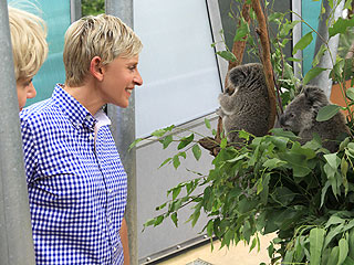 Ellen DeGeneres & Portia de Rossi Mingle with Aussie Animals