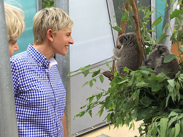 Ellen DeGeneres, Portia de Rossi at Taronga Zoo in Sydney, Australia: Photo