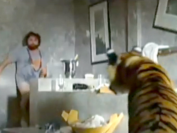 Tiger Surprises Woman in the Bathroom