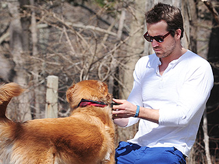 The Daily Treat: Why We're Jealous of Ryan Reynolds's Dog | Ryan Reynolds
