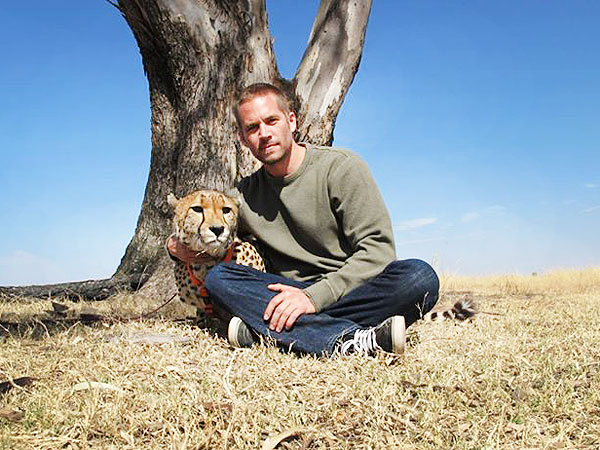 Paul Walker - Self Proclaimed Animal Lover