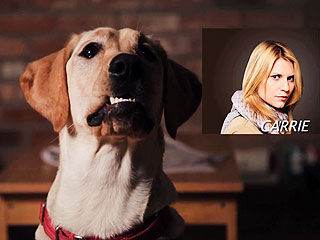 The Daily Treat: Homeland Is Going to the Dogs on 'Boneland'