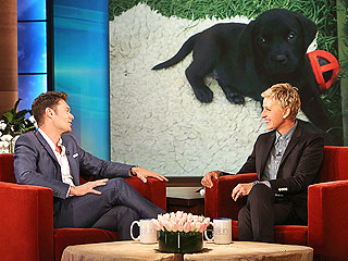 Ellen DeGeneres Gives Ryan Seacrest Dog, Lady Advice