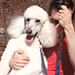 Funny Video: No Big Deal, Just a Poodle on a Swing
