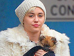 Stars and Their Pets | Miley Cyrus