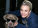 Stars and Their Pets | Kaley Cuoco-Sweeting