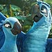 Rio 2 'Dazzles' and 'Pops,' but the Plot Fades Fast