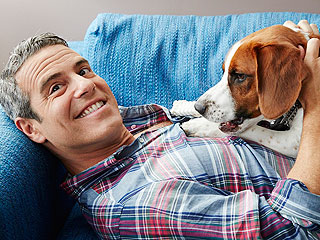 Andy Cohen: My Dog 'Has Opened Up My Life to More'
