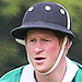 Prince Harry Returns to the Polo Field After Making Time for a Special Visit for Princess Charlotte