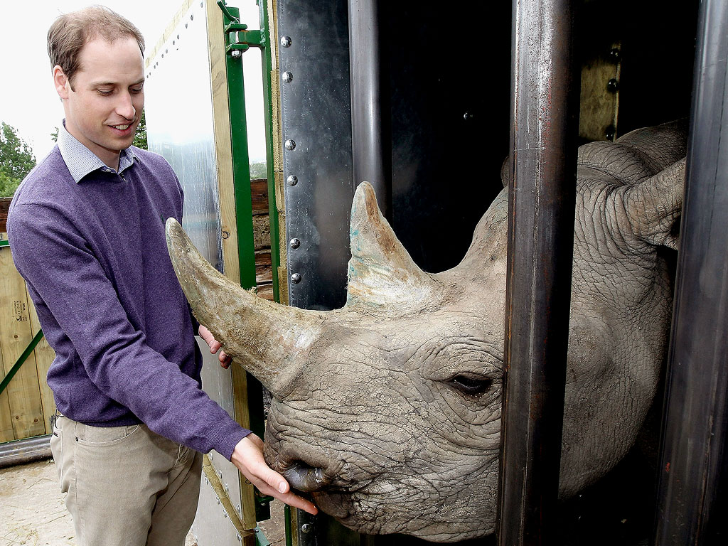 Prince William Honors 'Exceptional' Hero in the Fight Against Poachers in Africa