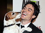 Remembering Uggie: The Oscar-Winning Pup Every Celebrity Adored | Uggie, Ian Somerhalder