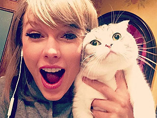 Taylor Swift Reunites with Cat Meredith in Hilarious Photo