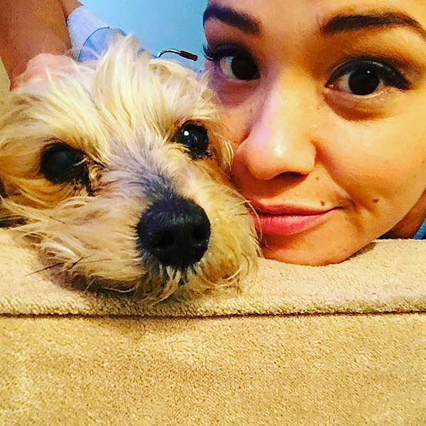 Gina Rodriguez: Jane the Virgin Star Mourns Death of Dog on Instagram