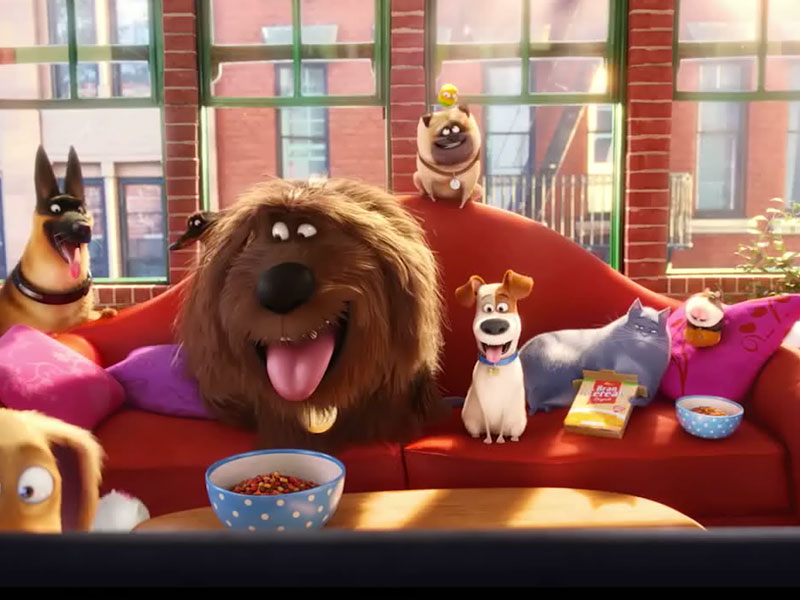 Watch take an exclusive look inside the secret life of pets people