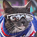 'Sunglasses Cat' Turns Eye Problem Into Excuse to Look Fly All the Time