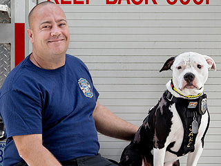 How a Severely Burned Puppy Became a Firefighter
