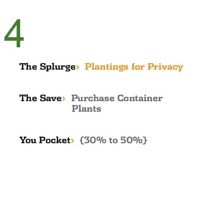 Save While You Splurge: Plantings for Privacy