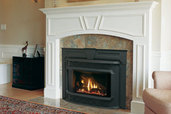 fireplace insert