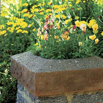 Stone planter has yellow and pink flowering plants