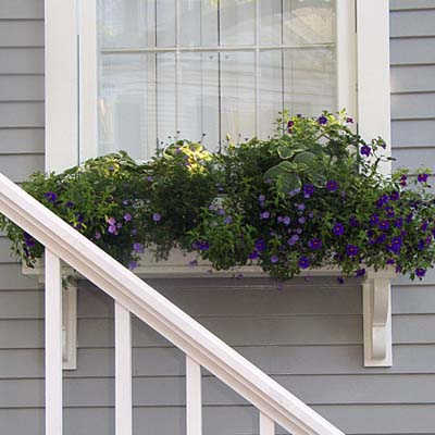 windowboxes need good support