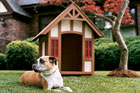 tudor doghouse