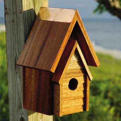 mahogany wren birdhouse