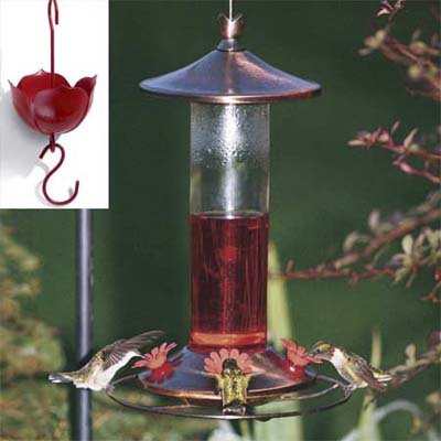 copper-accented hummingbird feeder