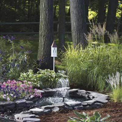 the sunterra butterfly pond in a butterfly garden