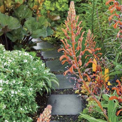 concrete paver stepping stones lined with brightly colored plants