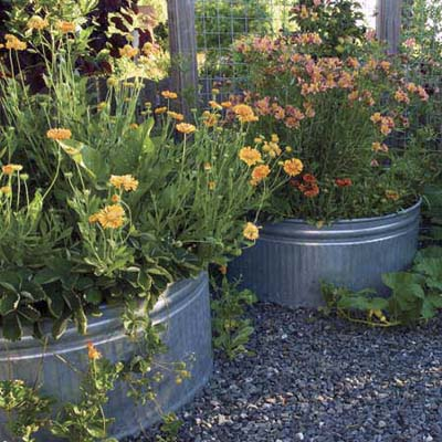 large galvanized feed troughs serve as permanent planters in a raised garden