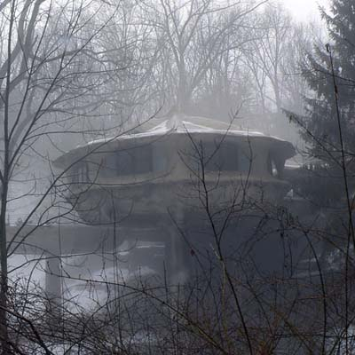 a mushroom looking house in a foggy wooded area