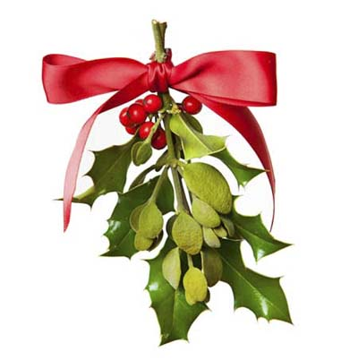 closeup of a mistletoe sprig  decorated for christmas