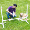mark powers assembling jump bars in yard with dog lying next to him