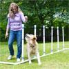 woman running dog through weave bars in yard