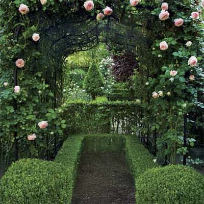 soft pink roses climb an arbor with boxwood shrubs and a pea gravel pad beneath