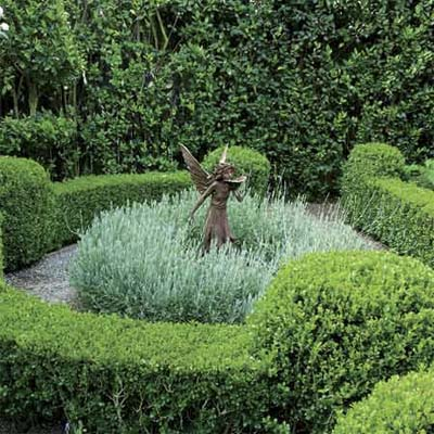 a copper angle statue/birdbath surrounded by sheared boxwoods and a circle of lavender plants