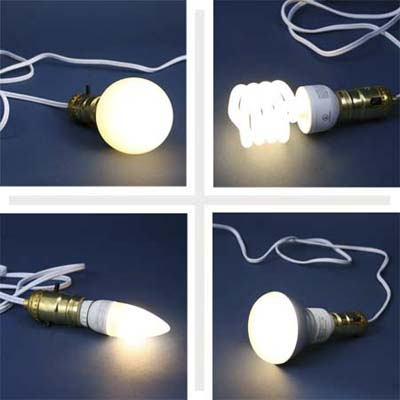 selection of compact fluorescent light bulbs in various sizes and shapes